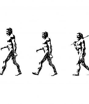 نقد برداشت های رایج از داروینسیم